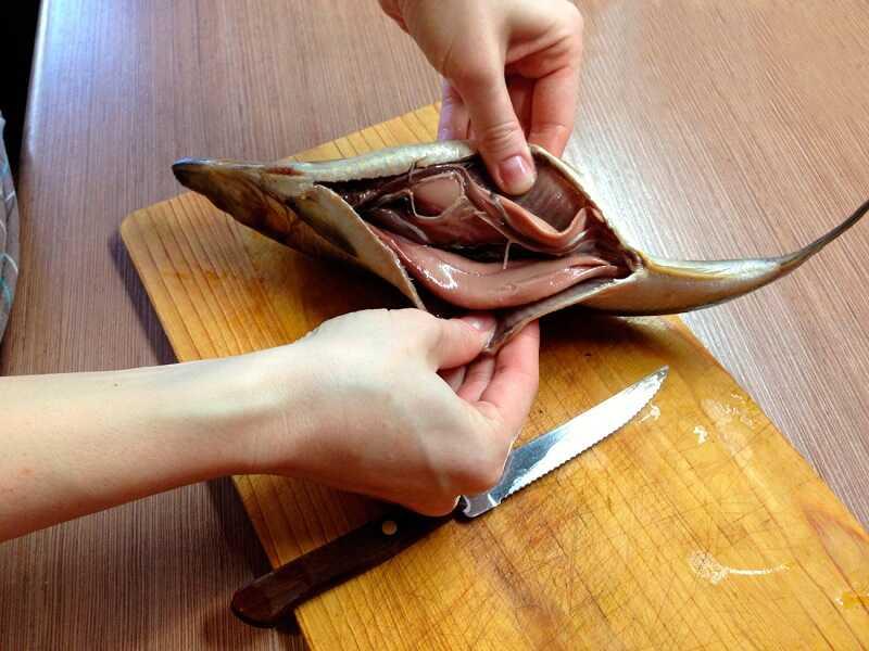 Обработка сельди перед копчением
