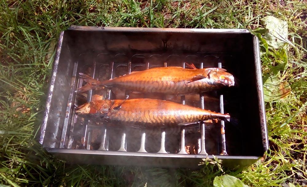 Коптильня для рыбы горячего копчения