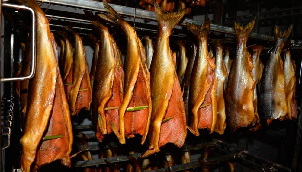 Как закоптить рыбу в коптильне холодного или горячего копчения