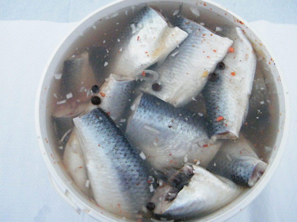 Рыба в солёной воде