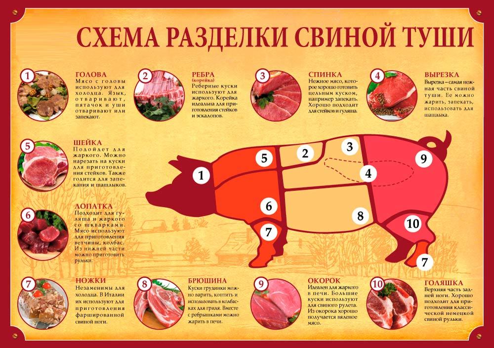 Схема разделки свинины