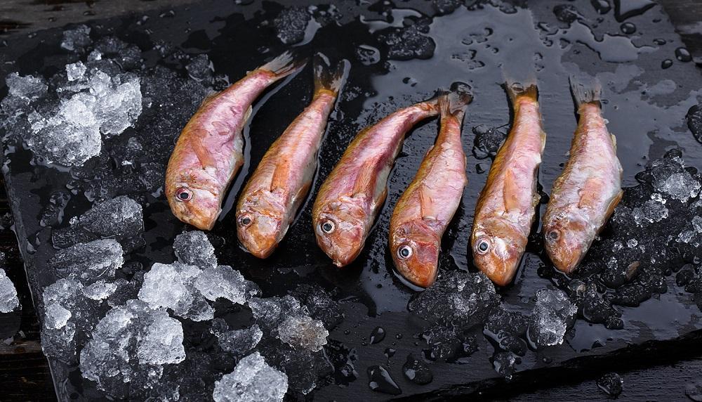 Свежемороженая черноморская барабулька