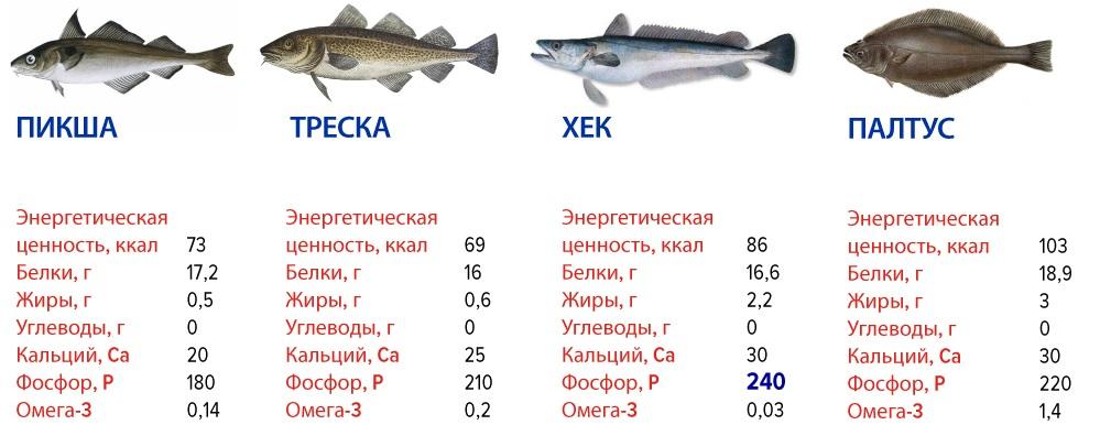 Ценные сорта рыбы