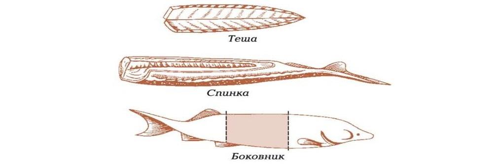 Виды разделки рыбы
