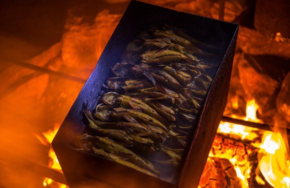 Копчение рыбы на природе