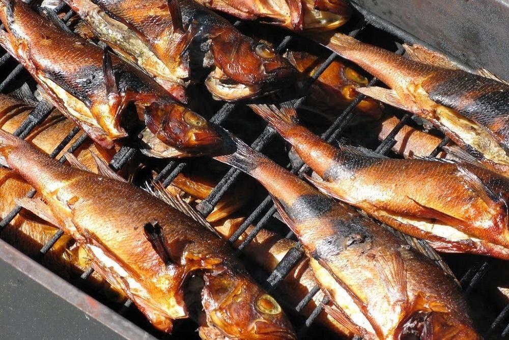 Копчение рыбы на щепе