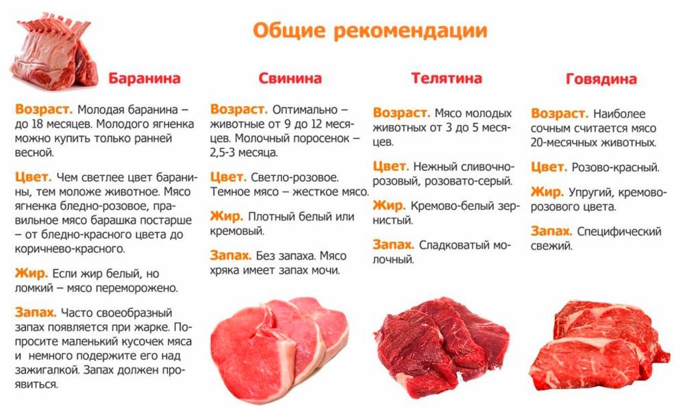 рекомендации по выбору мяса