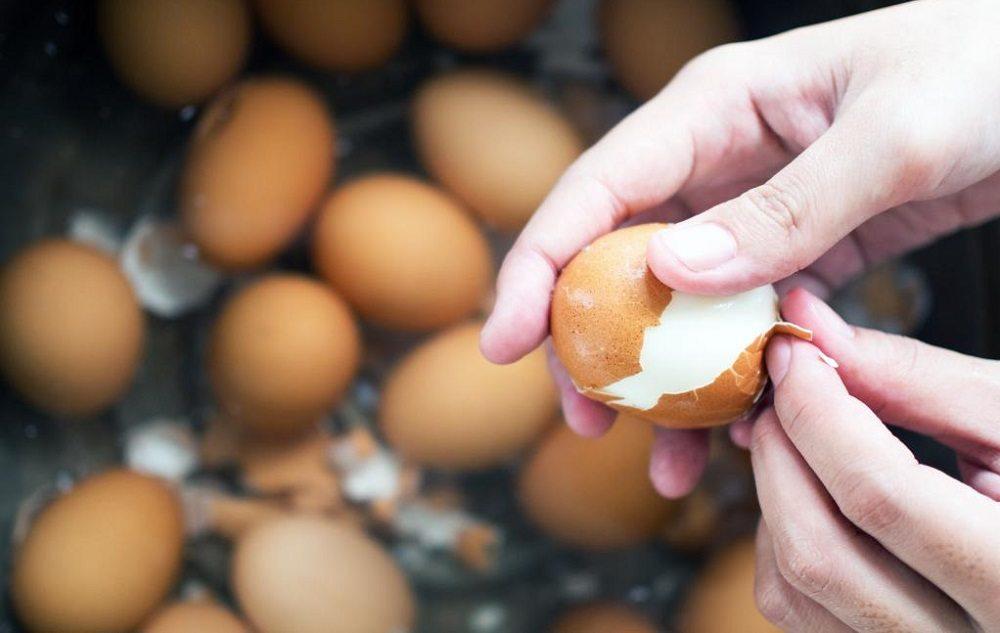 Скорлупа куриных яиц