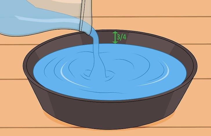 Вода в чаше