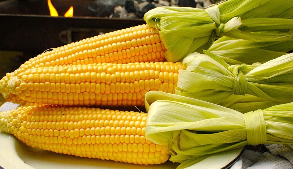 Кукуруза для жарки