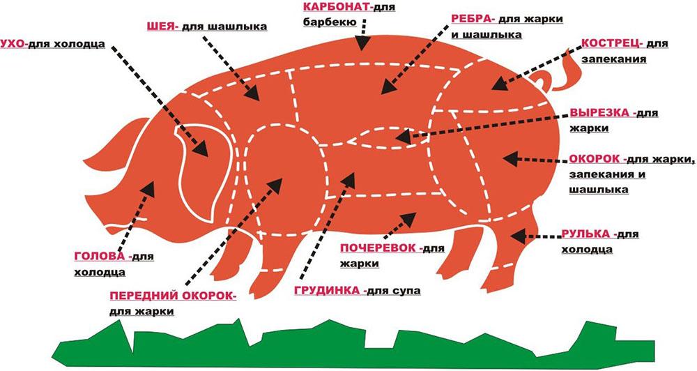 Части свиной тушки